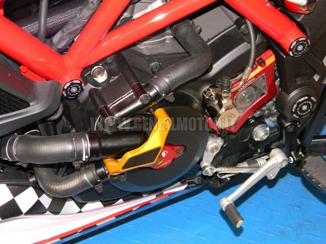 PPA01B Ducabike Ppa01b Protezione Pompa Acqua Oro