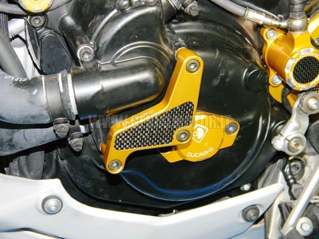 PPA02B Ducabike Ppa02b Protezione Pompa Acqua Oro